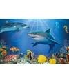 Placemat onderwaterwereld 3d 30 x 40 cm
