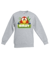 Sweater grijs voor kinderen met birdy de papegaai