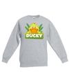 Sweater grijs voor kinderen met ducky de eend