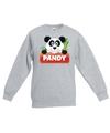 Sweater grijs voor kinderen met pandy de panda